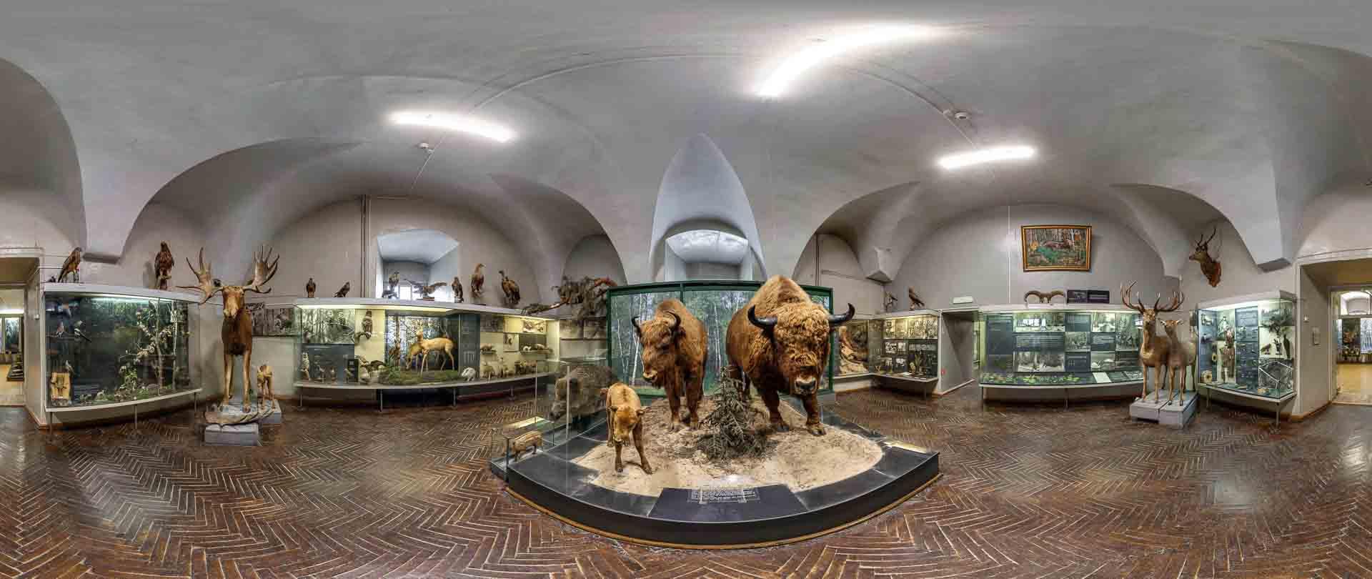 virtual tour 360 foto panoramiche museo